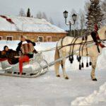 Сельские усадьбы Алтайского края предложат туристам дегустации сыров и катание на лошадях